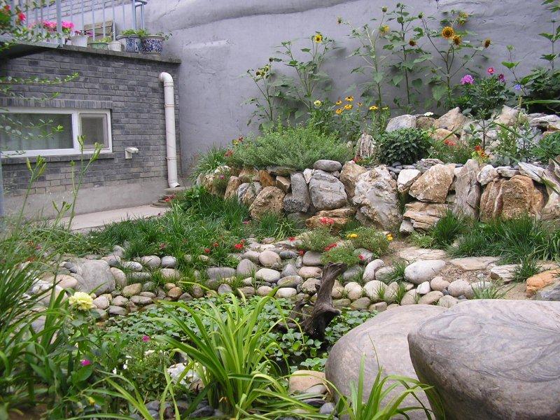 The motley garden