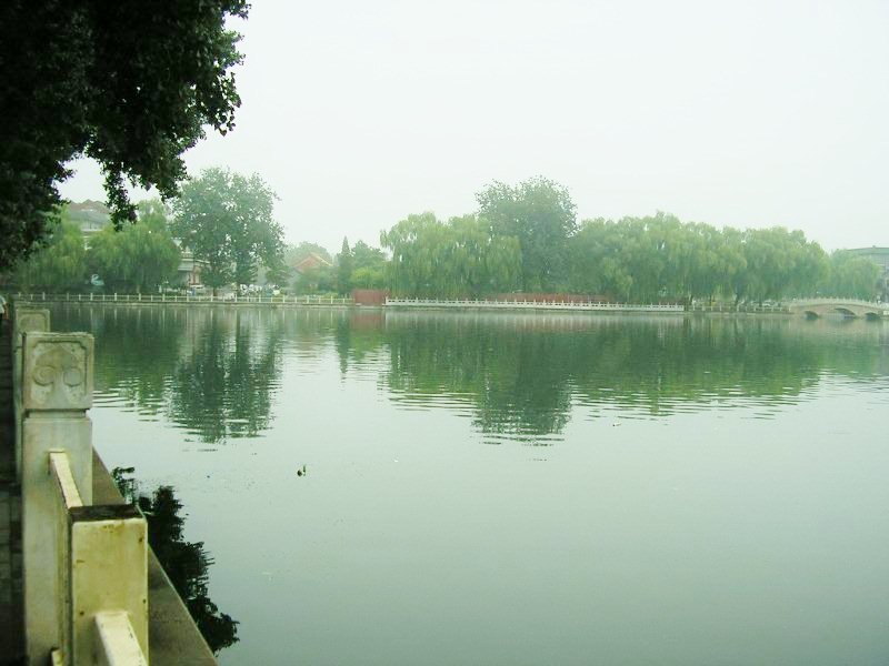 Qianhai in July