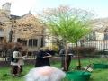 tree_planting_1749